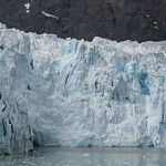 The pieces of ice in the water is from this glacier's calving about a minute earlier