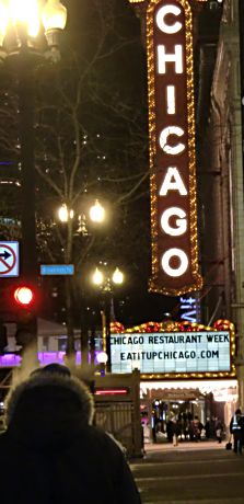 The French Baroque style Chicago Theatre arguably became the prototy[e for movie palaces