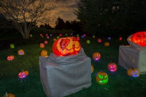 Celebrate Halloween this weekend and next at the Chicago Botanic Garden. CBG Photo