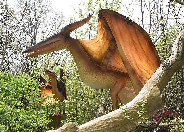 A Couple Of Pteranodons Guard A Brookfield Zoo Nature Trail Where Dinosaurs  And Dragons Lurk.