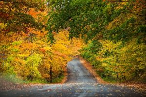Traverse City area puts on a color show each fall. TC Visitors Bureau photo