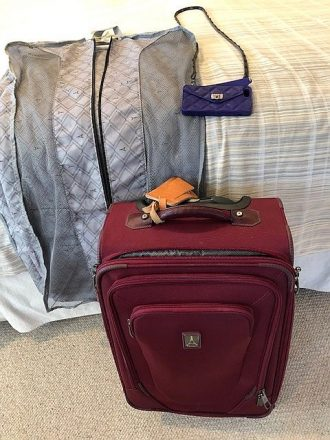 spinner carry-on, hanging bag and cell-phone wallet on a strap. (J Jacobs photo)